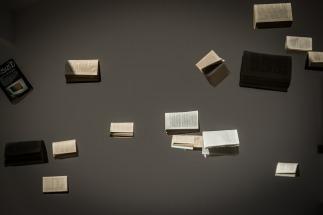 book-436512_1920