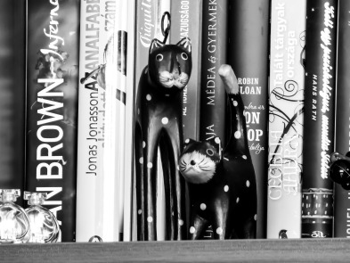 bookshelf-2005284_1920